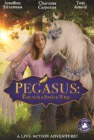 Pegasus: Kırık Kanatlı Midilli Filmi izle Türkçe Dublaj